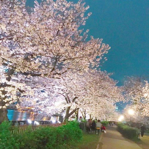 春の婚活祭り♡